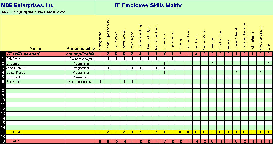 Assess IT support capability and capacity with an IT Employee