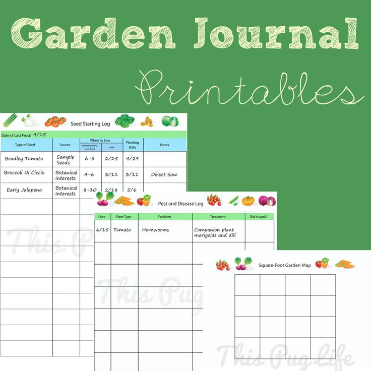 Best 25+ Free garden planner ideas on Pinterest | Garden planner