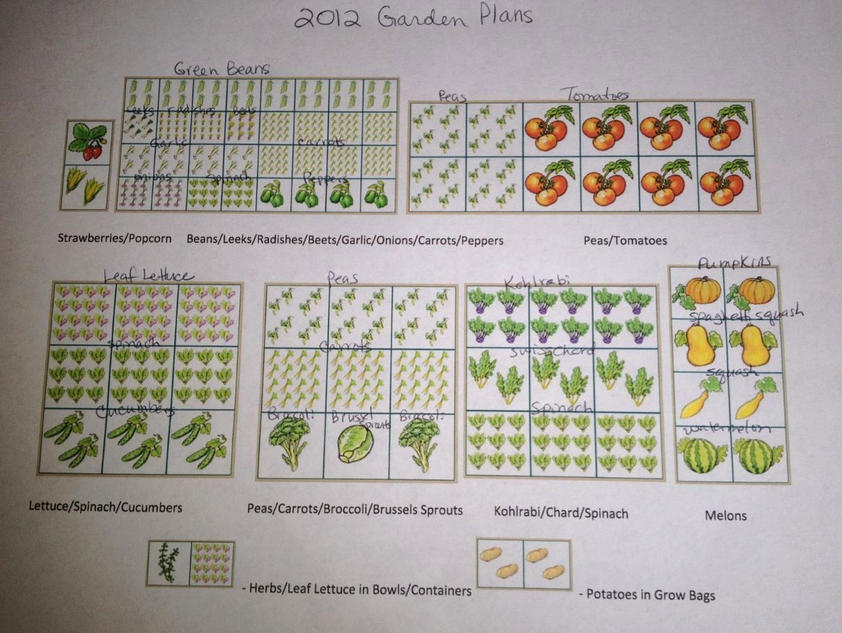 Garden Planning: the Ultimate Printable Garden Planner ~