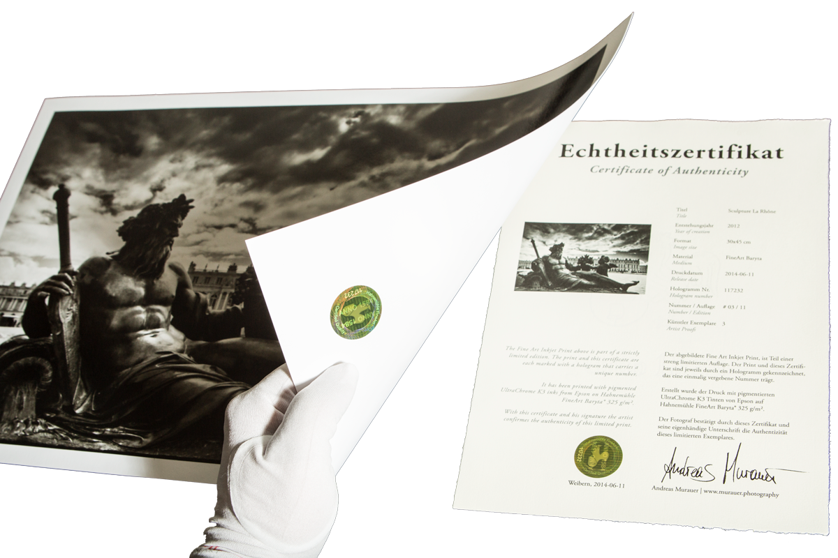 Certificate Of Authenticity Photography – planner template ...